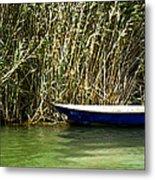 Water Scene Pano Metal Print