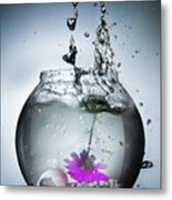 Water Splash  Metal Print