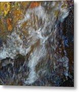 Water Whimsy 169 Metal Print