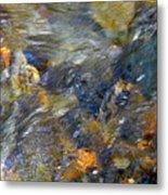 Water Whimsy 173 Metal Print
