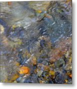 Water Whimsy 176 Metal Print