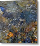 Water Whimsy 178 Metal Print