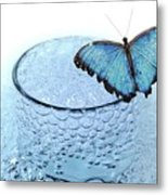 Water With Butterfly Metal Print
