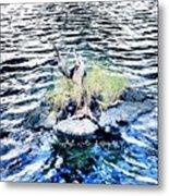 Water Woodwork Metal Print