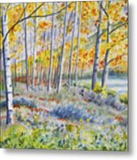 Watercolor - Colorado Autumn Forest And Landscape Metal Print