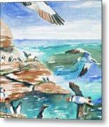 Watercolor - Seabirds Of The North Atlantic Metal Print