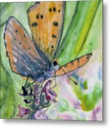 Watercolor - Small Butterfly On A Flower Metal Print