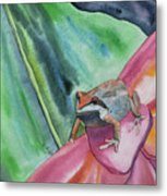 Watercolor - Small Tree Frog On A Colorful Flower Metal Print