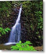 Waterfall-1-st Lucia Metal Print