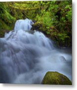 Waterfall At Shepperds Dell Falls Metal Print
