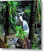 Waterfall El Yunque National Forest Mirror Image Metal Print