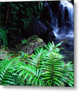Waterfall El Yunque National Forest Metal Print