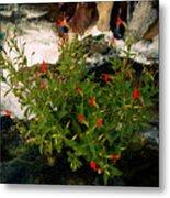 Waterfall Flowers Metal Print