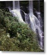 Waterfall Wildflowers Metal Print