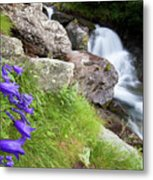 Waterfalls And Bluebells Metal Print