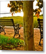 Waterfront Park Bench Metal Print by Lori Kesten