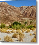 Waterhole Metal Print
