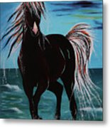 Waterhorse Metal Print