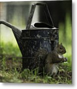 Watering Can Metal Print