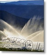 Watering The West Metal Print