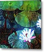 Waterlilies 19 Metal Print