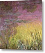 Waterlilies at Sunset Metal Print