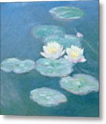 Waterlilies Evening Metal Print