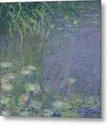 Waterlilies Morning Metal Print