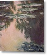 Waterlilies With Weeping Willows Metal Print