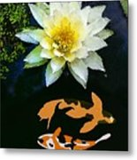 Waterlily And Koi Pond Metal Print