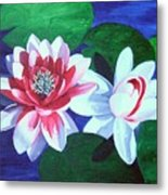 Waterlily Dance Metal Print