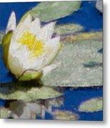 Waterlily Reflections Metal Print