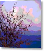 Watermelon Sky Metal Print by Barbara Schultheis
