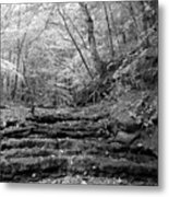 Waterscape In Bw Metal Print