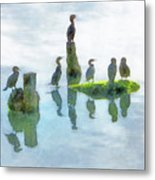 Watersky Birds Metal Print