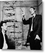 Watson And Crick Metal Print by A Barrington Brown and Photo Researchers