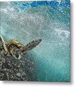 Wave Rider Turtle Metal Print