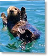 Waving Otter Metal Print