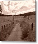 Way To Home Metal Print