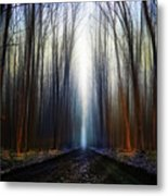 Way To The Blue... Metal Print