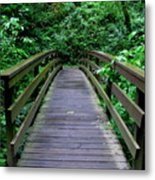 We All Have Bridges To Cross Metal Print