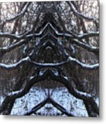 We Protect The Trees Metal Print