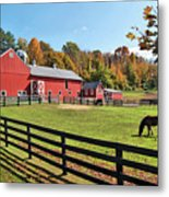 Weathercock Farm Metal Print