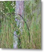 Weathered Fence Post Metal Print
