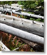 Weathered Trees Fallen Down Within Yellowstone National Park Metal Print