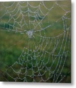 Web After The Storm Metal Print