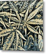 Weed Abstracts Four Metal Print
