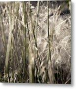 Weeds #1 - 310061 Metal Print