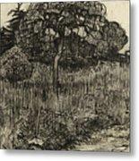 Weeping Tree Metal Print