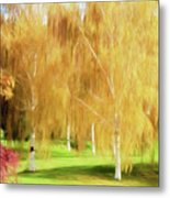 Weeping White Birch Metal Print